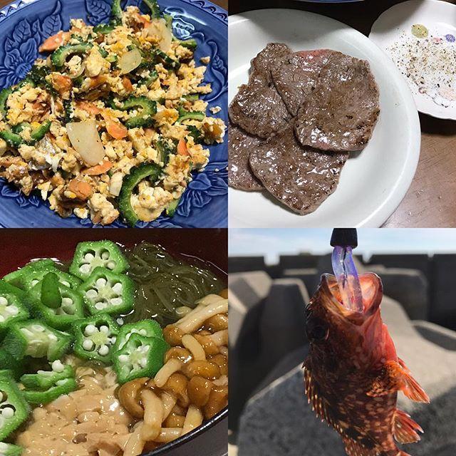 #🍽 #ゴーヤちゃんぷるー  #ネバネバ丼  #肉 #リリースせーや💢 byガシラ