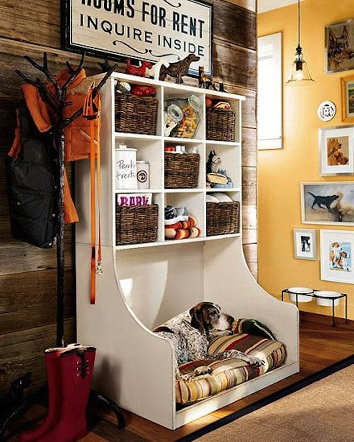 keeping things organized and a place to rest for the pooch in your life
