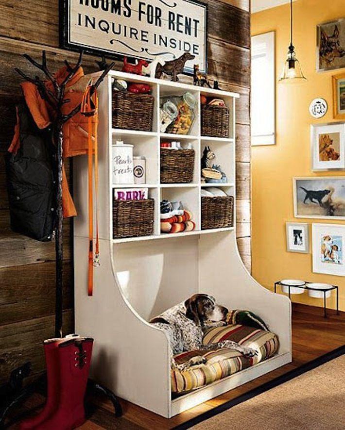 Top 25+ best Indoor dog rooms ideas on Pinterest Boarding - dog bedroom ideas