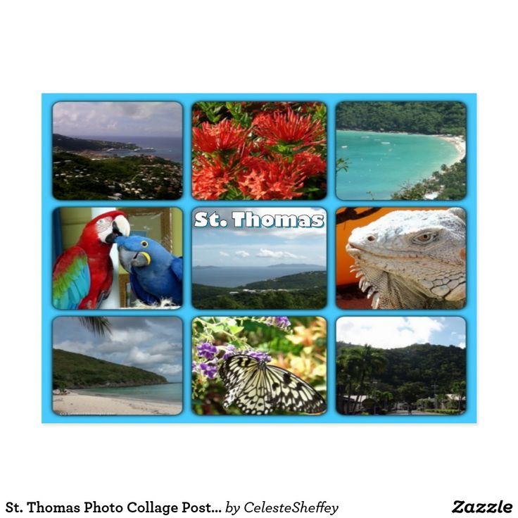 St. Thomas Photo Collage Postcard (sold in Missouri) Thank you!