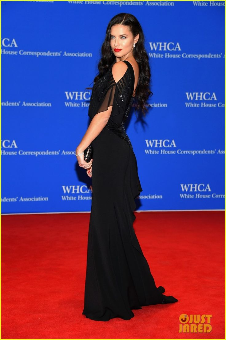 Adriana Lima & Anne V Are Stunners at White House Correspondents' Dinner…