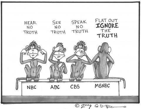 Image result for media bias cartoons
