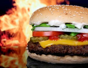 Fast Food Risks.. Serious health problems and chronic diseases related to obesity' are at alarming rates in the United States- obesity at more than 25% in most states.