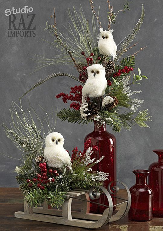Christmas owl arrangement. How CUTE! And different. Love this