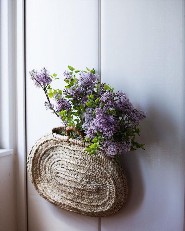 It's lilac season!#lilac #lilacs #myfavoriteflowers #lilacseason 花市場に国産ライラックが出始めました。輸入ものと違い、出回る時期が限られているので貴重です☺️  #Regram via @nonihana_