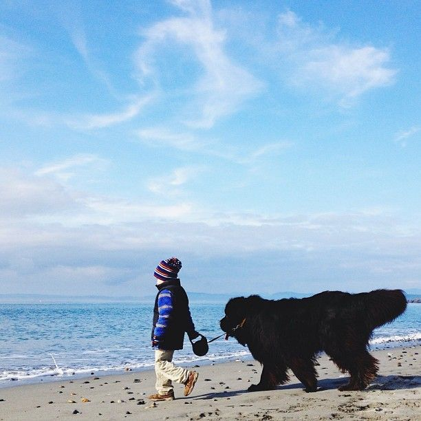 """Stasha Becker aka @Stasha Becker, the mother and photographer of her 4-year-old son Julian and their huge dog, a five-year-old Newfoundland named Max. The family lives in the Pacific Northwest, on an island just above Seattle. As Stasha states, """"Our island is one big playground and there are adventures galore."""""""