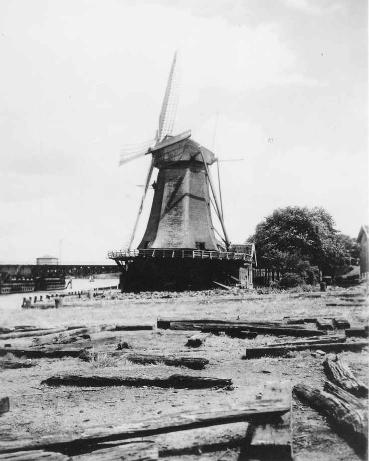 "Windmill ""De Zeelt"" on  's Gravendeelsedijk, 1905"