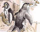 I can walk like a penguin! Or paint like a penguin- or paint a penguin. Signed print, $18.00: Art Watercolor, Nurseries, Watercolor Pens, Signs Prints, Art Kids, Animal Prints, Kids Wall Decor, Pens And Ink, Ink Animal