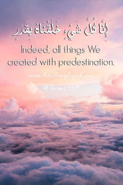 Islamic Daily: Predestination