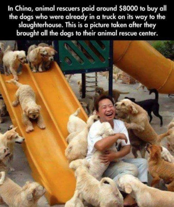 40 Heartwarming Memes That Will Restore Your Faith In Humanity