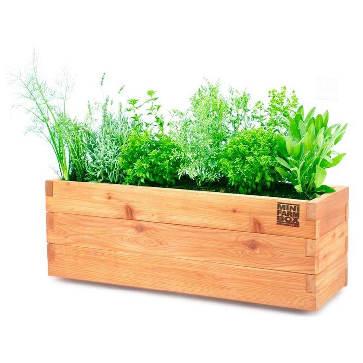 17 Best Ideas About Cedar Planter Box On Pinterest: 17 Best Ideas About Balcony Planters On Pinterest