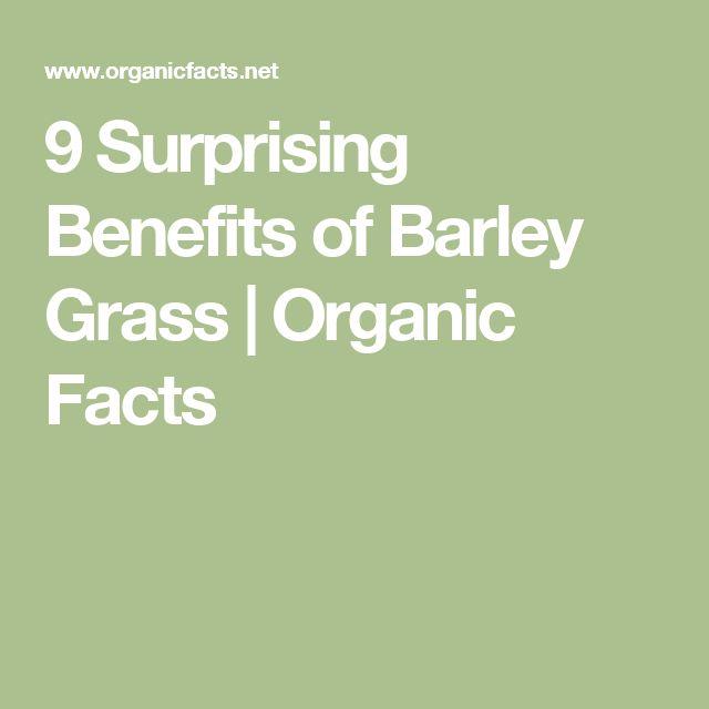 9 Surprising Benefits of Barley Grass | Organic Facts