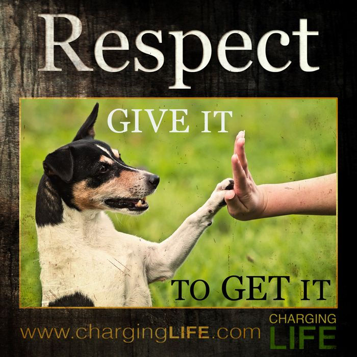 23 best respect quotes for kids images on pinterest