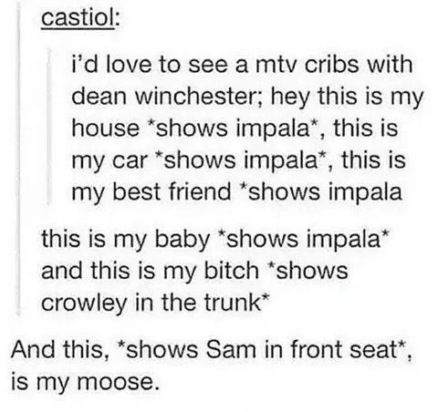 """And this *gestures to cas* is my boyfriend! Sam """"......"""" Dean"""" I meant husband! No no! I meant angel! Fuck that doesn't sound better..."""""""