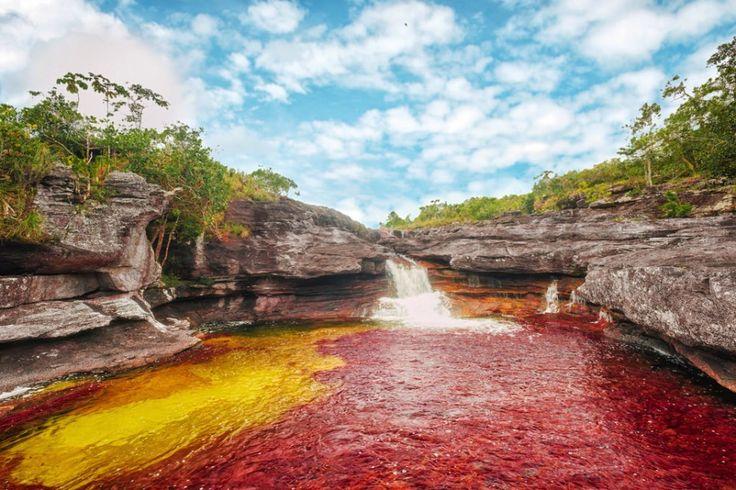 Caño Cristales River, Colombia  Devido à sua extensa habitat de fauna e flora, este rio que flui aparece em amarelo, verde, azul, preto e vermelho como você viajar ao longo dela. As rochas aqui são cerca de 1,2 bilhões de anos, e aqueles que visitam chamá-lo o mais belo rio do mundo.