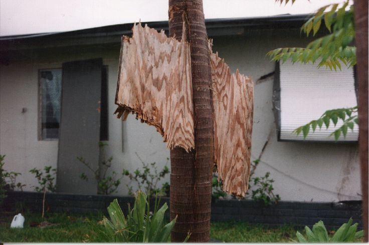 20th Anniversary of Hurricane Andrew. The winds of Hurricane Andrew were almost equivalent to being in an EF-2 or EF-3 tornado. Image Credit; NOAA/NWS