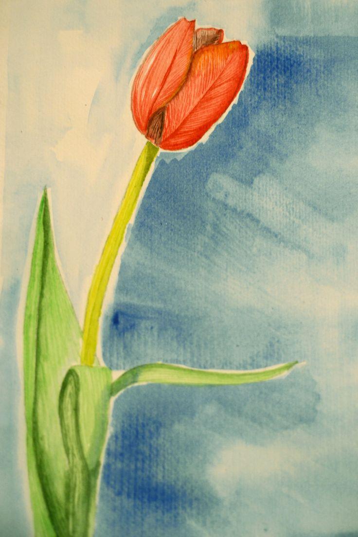 Red tulip by Liudmila Mehedinteanu.