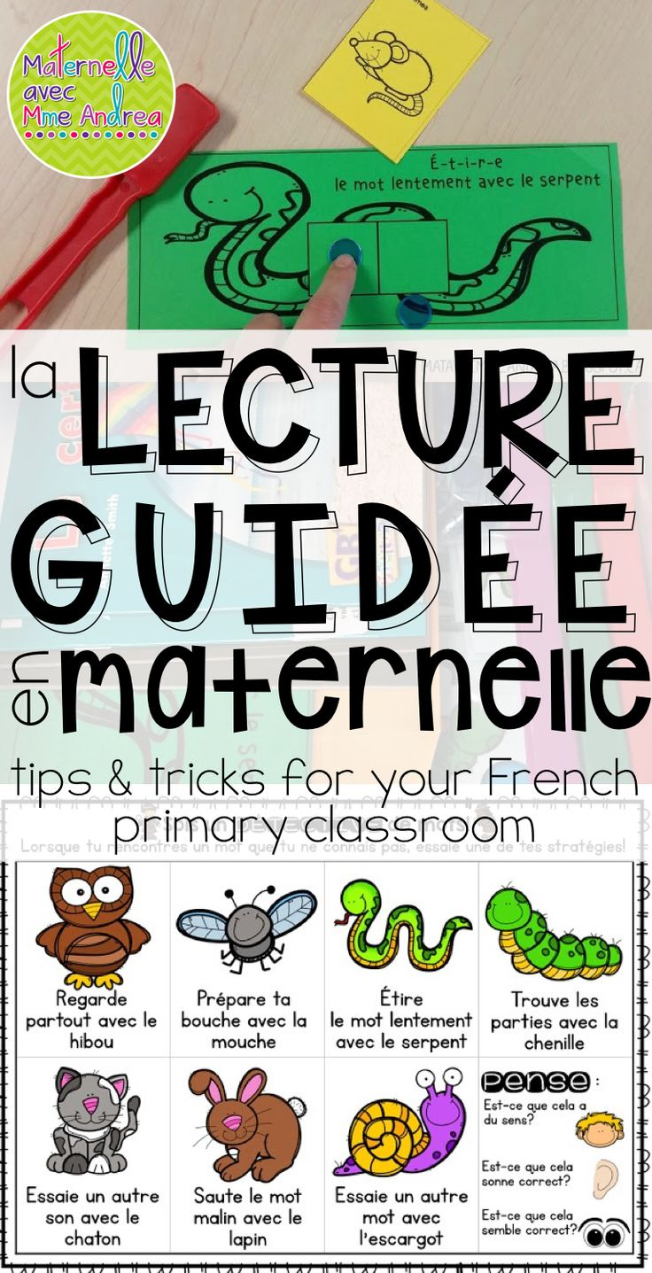 I am so excited!! I have FINALLY finished my Lecture guidée en maternelle pack ! It has been a labour of love and on the go for a LONG ti...