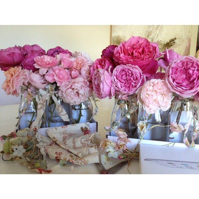 @rachelashwell 6 packs of Roses. Instagram #shabbychic #rachelashwell #roses