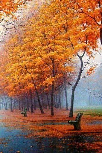 Prachtige herfst