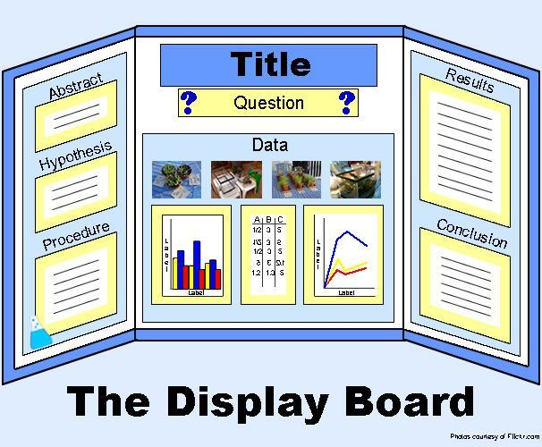 science fair project board layout Science fair display boards – communicate your experiment and results you want everyone to know how hard you've worked on your project and what a good job you did.
