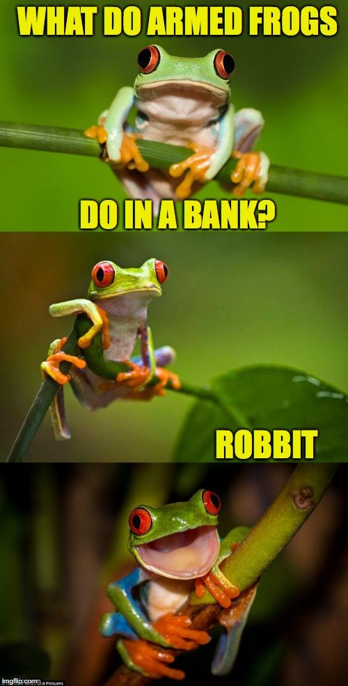 Croakers | WHAT DO ARMED FROGS ROBBIT DO IN A BANK? | image tagged in frog puns | made w/ Imgflip meme maker