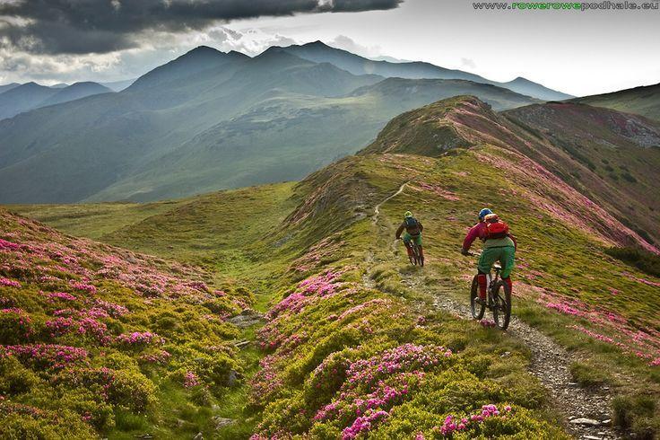 "Mountain Biking Movie: ""Path Finder"" | Singletracks Mountain Bike News"
