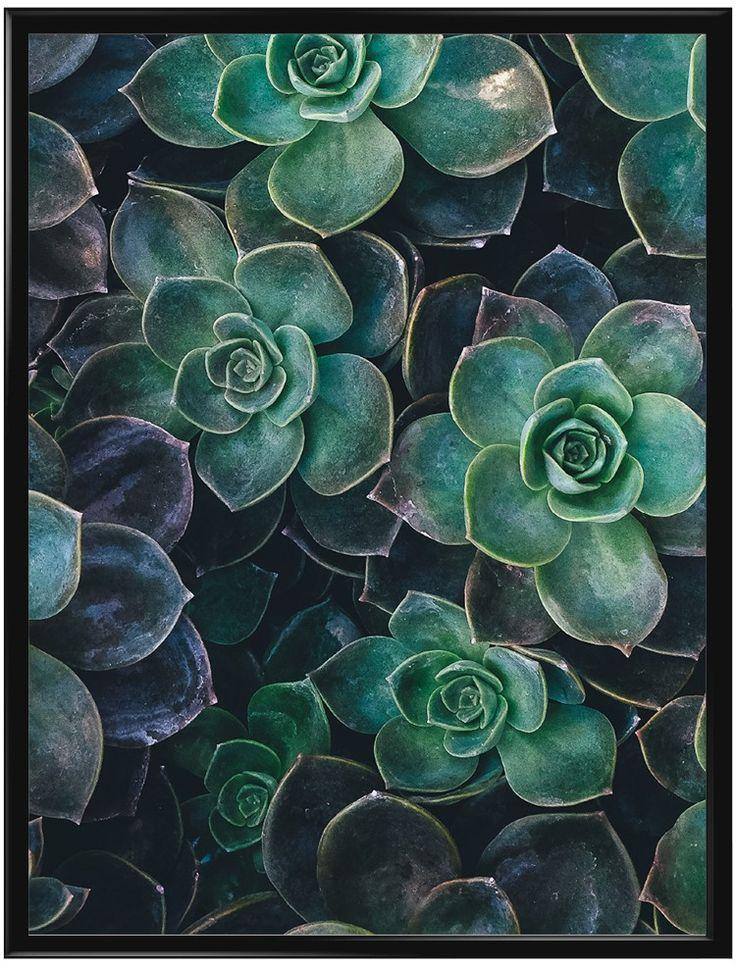 Poster med fotografi av gröna växter. Fotografiet i denna affisch har ett…
