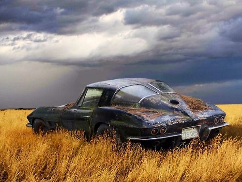 Picture comes with angels singing in the background. 1963 Corvette Split Window Coupe