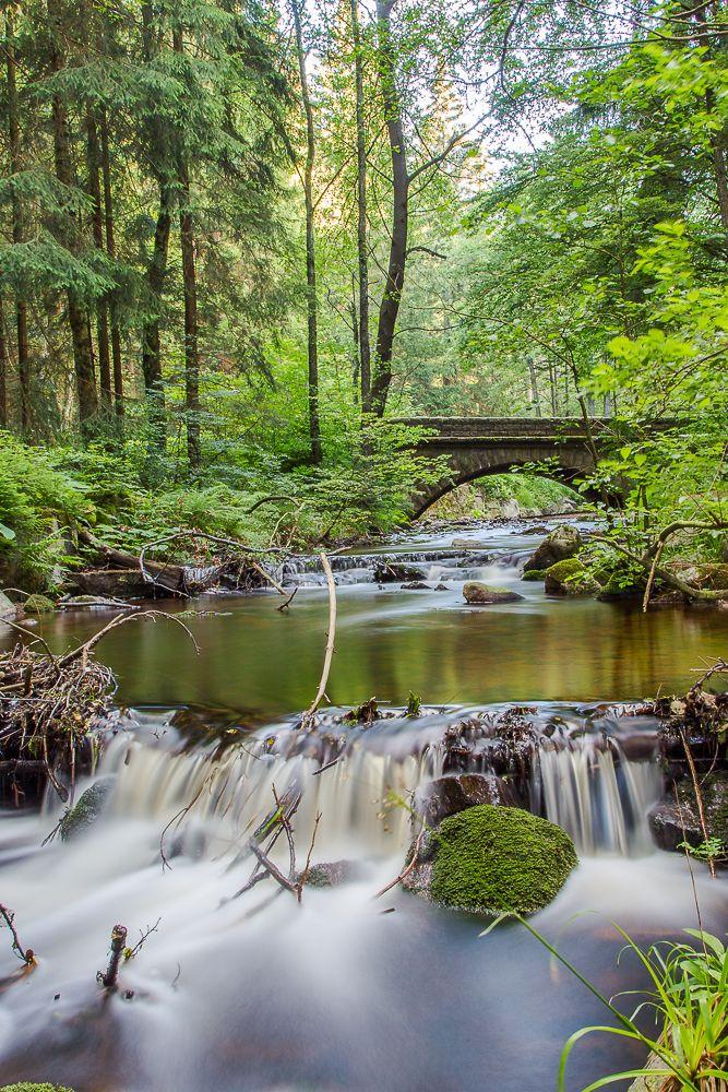 Die Bode in der Nähe von Braunlage im Harz