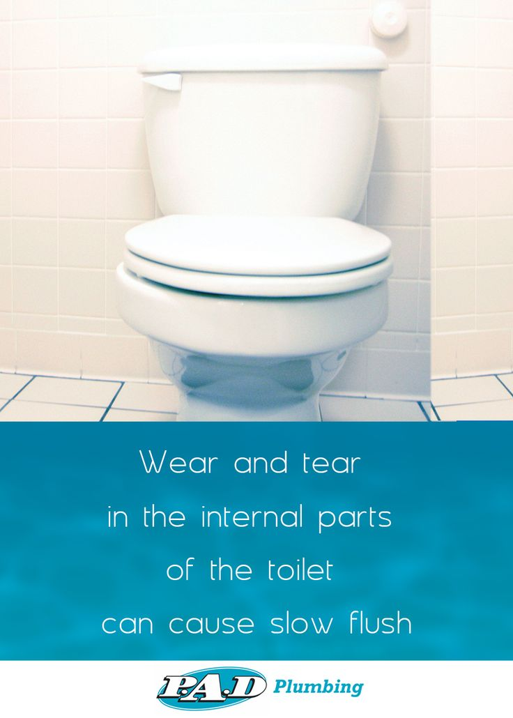 Slow flushing toilets can indicate a problem with your drainage! #PlumberEssendon #ToiletRepair