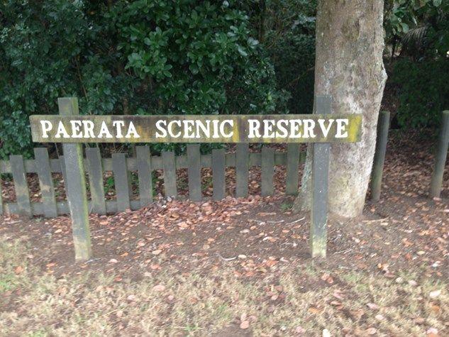 Paerata Scenic Reserve - Franklin Country