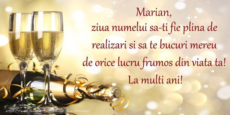 Marian, ziua numelui sa-ti fie plina de realizari si sa te bucuri mereu de orice lucru frumos din viata ta! La multi ani!
