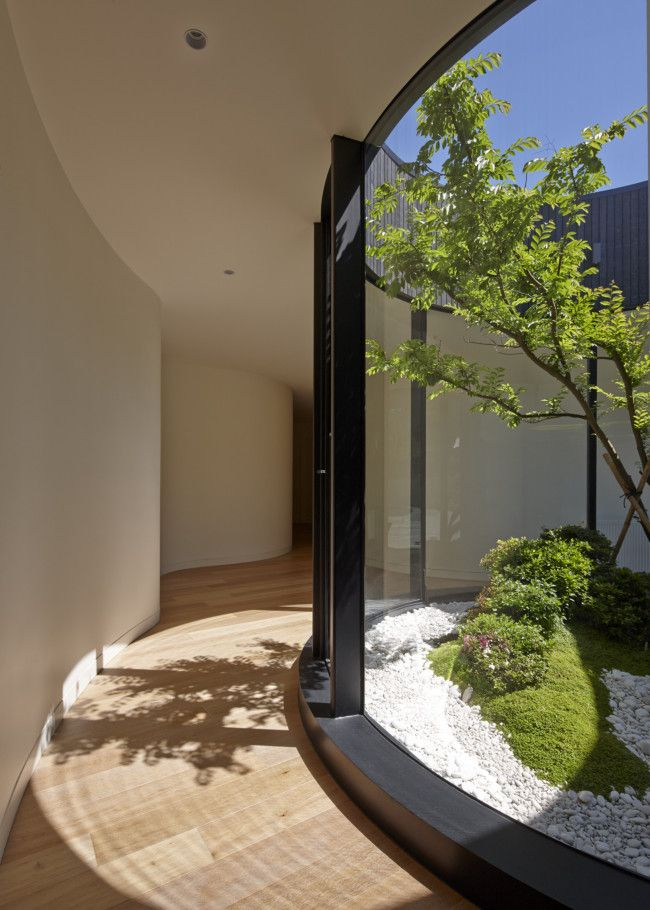 A circular, glassed-in courtyard landscaped by Lindsay Farr from Bonsai Farm; Home designed by Melbourne studio