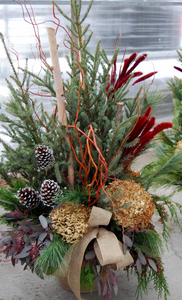 272 best garden winter containers images on pinterest christmas ideas christmas urns and - Best dried flower arrangements a colorful winter ...