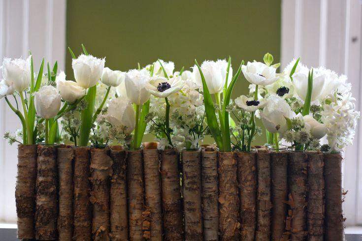 white hyacinth - Google Search