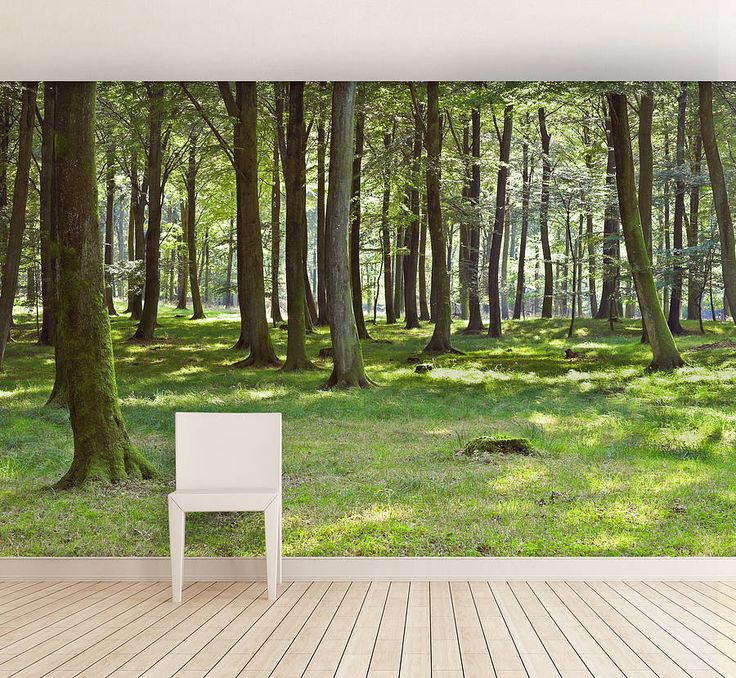 woodland forest self adhesive wall mural by oakdene designs | notonthehighstreet.com
