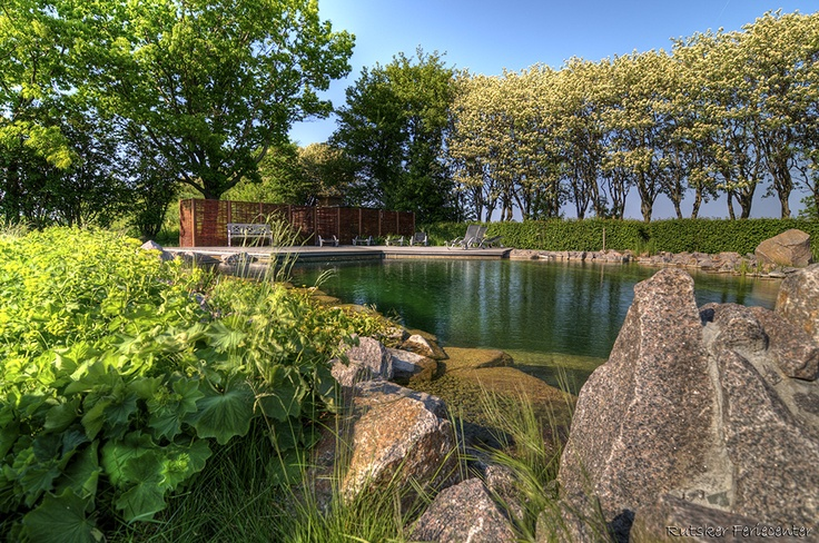Our swimlake on Bornholm - Denmark  without any cemicals!