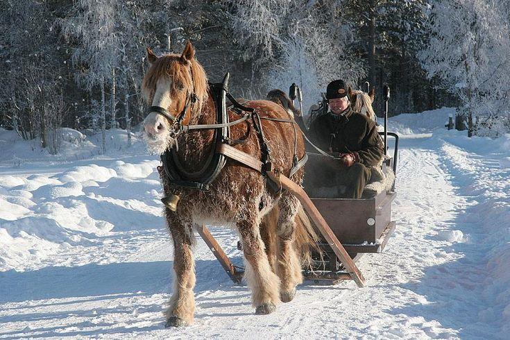 Susanne Eftevand: Trip in cold weather -