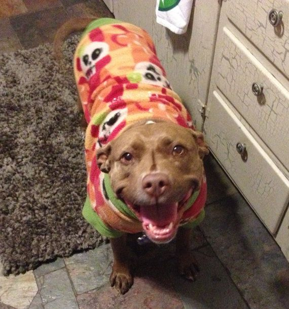 36 best dog sweaters images on Pinterest | Dog sweaters, Diy dog ...