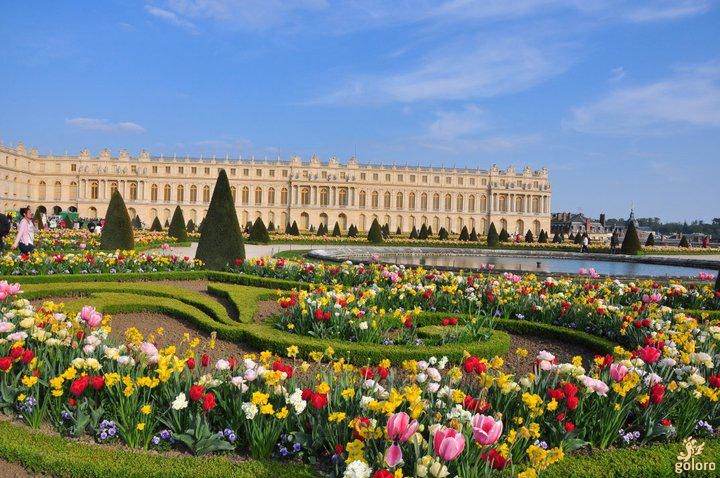 Gardens Of Versailles Beautiful Places Pinterest