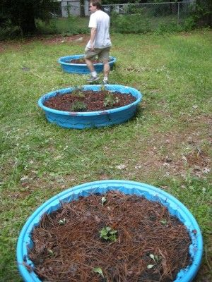 Raised Bed Gardening using kiddie pools,  it works great. You can spray paint terracotta color so it looks more like a planter.