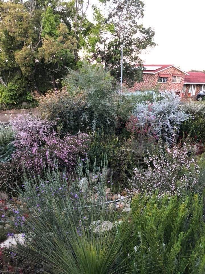 Pin On Front Garden Ideas