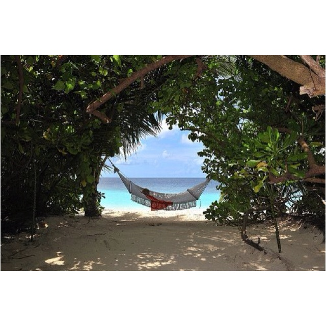 : Spaces, Beach Resorts, Life, Favorite Places, Happy Place, Hammocks, Travel, The Beach