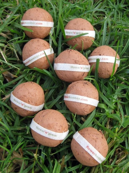 seed bombs $60 for 100.