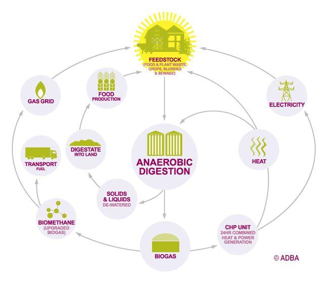 Kitchen waste based biogas plant design pdf kitchen waste for Household biogas plant design pdf