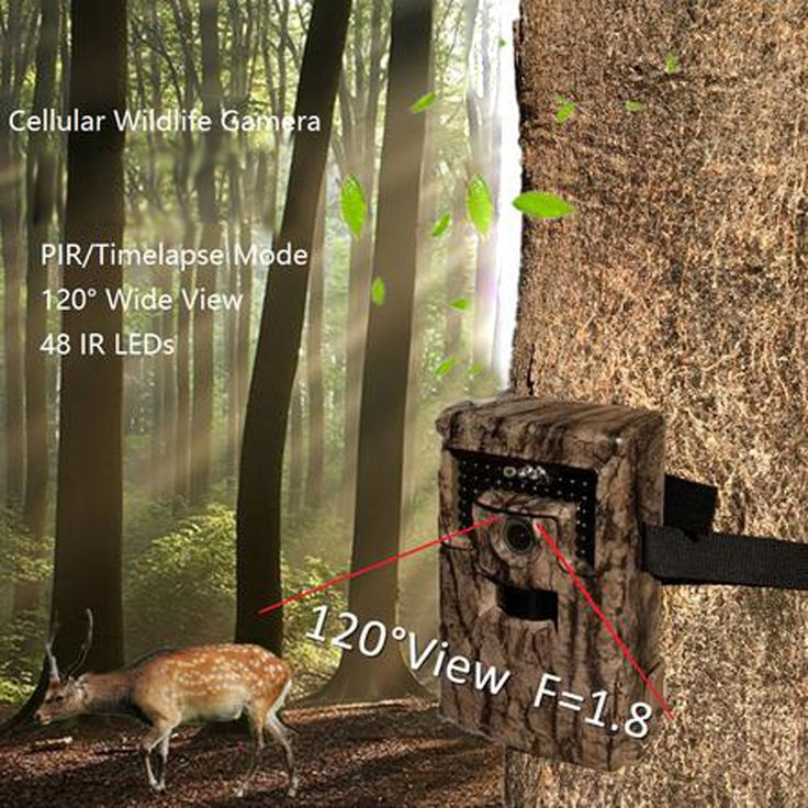 1080P 120 Degree Infrared Wide Lens Wireless Chasse Trail Forest Hunting Camera Trail Camera Hunting Game Camera W/Mic Speaker
