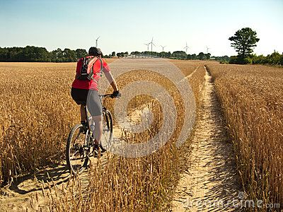 Summer Cycling - trekking through yellow harvest #field. #bike #cycling #summer #poland #