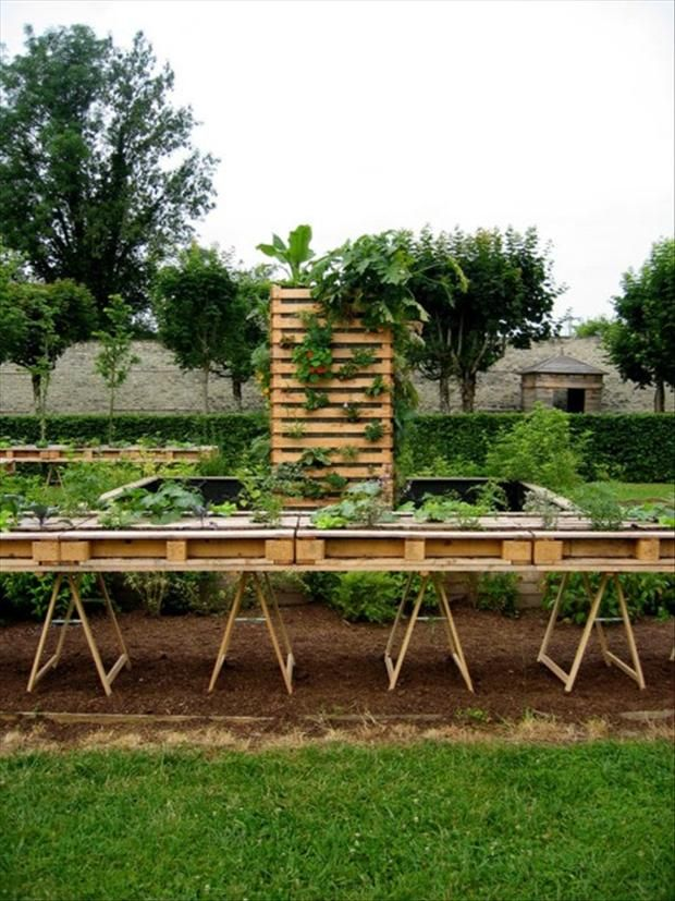 Table top gardening using pallets.  No instructions unfortunately, and couldn't find any DIY that's similar, but it appears to be a straightforward project.