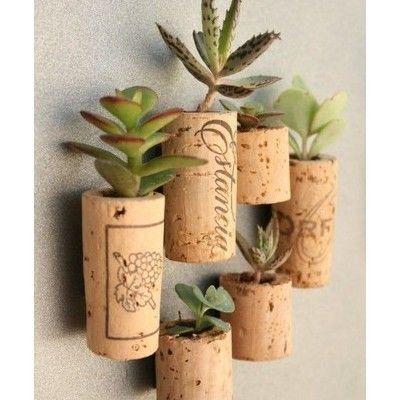 Cork PlantsPlant Holders, Wine Corks, Magnets, Cute Ideas, Succulent Plants, Gardens, Cool Ideas, Succulent Planters